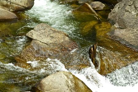 Small Mountain River Near Aspen, Colorado USA  Stock Photo