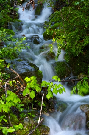 Mossy Creek Closeup Photography. Small Mountain Creek Vertical Photo. Long Exposure Tech. Nature Photo Collection Stock Photo - 14301352