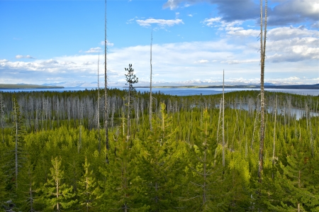 Yellowstone National Park, Wyoming USA Panoramic Photo. Lake Yellowstone, Forest and Mountains Range. Partly Cloudy Summer Sky. Nature Photo Collection. U.S. National Parks. photo