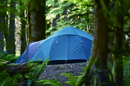 Tent Camping. Large Blue Tent in a Middle of Forest. Outdoor and Recreation Photo Collection. Washington State Forest. Stock Photo - 14301421