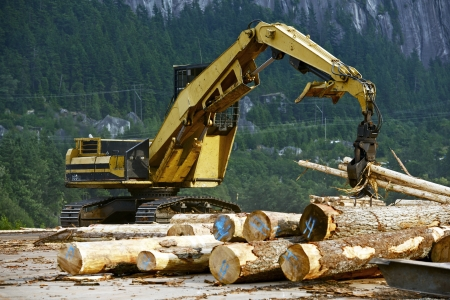 wood cutter: Wood Manufacturing - Woodwork Heavy Eqipment in British Columbia, Canada. Editorial