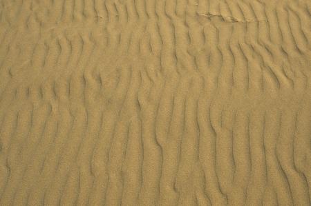 suelo arenoso: Playa de arena de fondo - textura de arena. Ocean Beach Background.