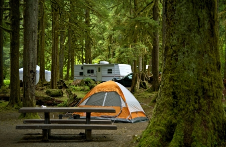 campground: The Campground - Small Orange Tent and Travel Trailer in the Background. Deep Forest Campground. Outdoor Lifestyle Photo Collection. Stock Photo