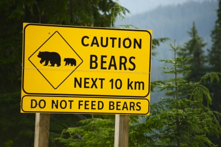 Caution Bears Next 10km - Do Not Feed Bears. Road Side Yellow Sign in British Columbia, Canada.  photo