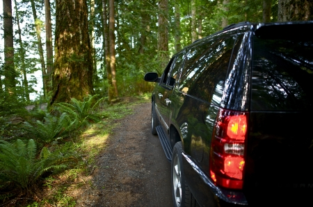 getaways: Riding Thru the Forest - Black SUV on the Forest Road. Transportation Photo Collection. Washington State Outback