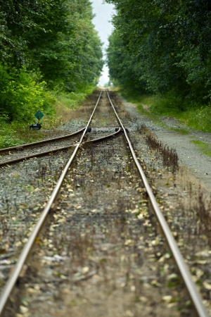 Railroad Tracks Vertical Photography  Canadian Railroads  Tracks Merge  Transportation Photo Collection photo