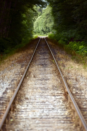 Straight Railroad Tracks Through Forest. Traveling and Destinations Theme. British Columbia Railroad - Canada.  photo