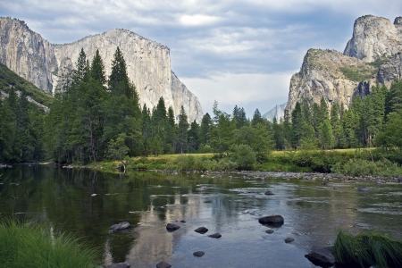 sequoia: Merced River Yosemite National Park, California, U.S.A. Beautiful Yosemite Valley Scenery with Merced River.