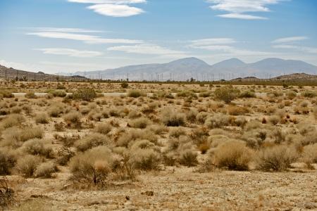 mojave: Mojave Desert US14 Hwy - Mojave Desert and Wind Turbines Plantation  Mojave, California, USA
