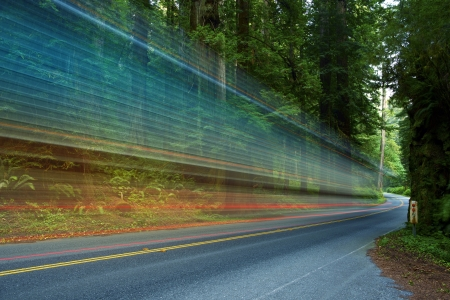 speeder: Forest Traffic - Redwood Forest in Northern California, USA and Truck in Motion ( Long Exposure Photography ) Traffic Theme