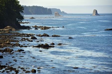 strait of juan de fuca: Salish Sea Rocky Coast. Strait of Juan de Fuca. Washington State Olympic Peninsula, USA. Washington Photography Collection.