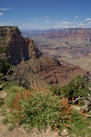 arizona scenery: Grand Canyon Scenery. World Famous Canyon in Arizona, USA. Grand Canyon National Park. Nature Photography Collection.