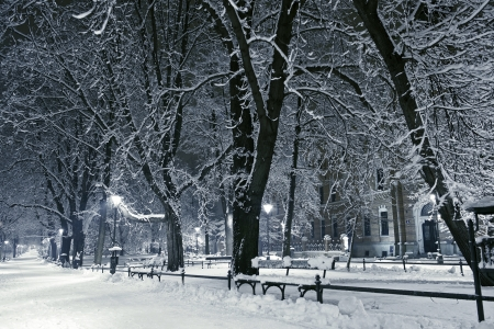 Winter Park. Heavy Snow in the Park. Old European Park at Night. Winter Landscapes Photography Collection.
