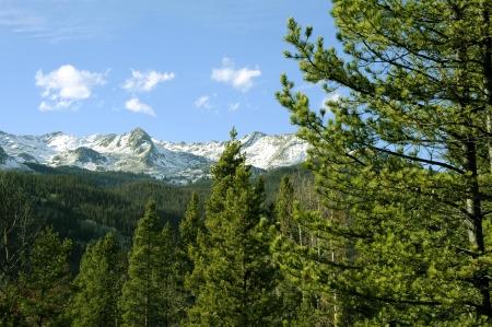 colorado rocky mountains: Rocky Mountains of Colorado - Early Summer in Colorado. Travel Photography Collection Stock Photo