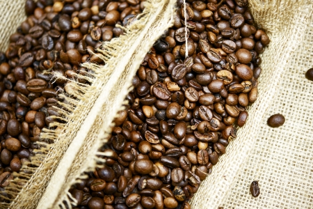 segregation: Fresh Raw Coffee Beans Closeup  Coffee Segregation