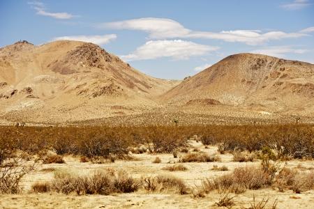 mojave: Raw Mojave Desert Landscape - Mojave Desert California, USA. Dry and Hot Summer Day. Stock Photo