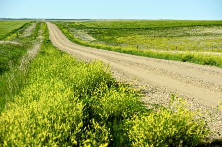 great plains: Nowhere Road. Unpaved Gravel Road in the Middle of Nowhere. American Great Plains Road. Stock Photo