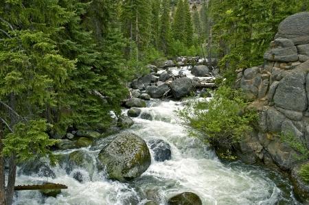 wyoming: Mountain River in Wyoming USA. Scenic Wyoming. Stock Photo