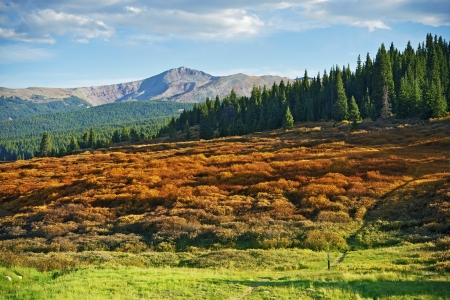 Scenic Colorado Landscape near Vail. Summer in Summit County. Colorado Nature