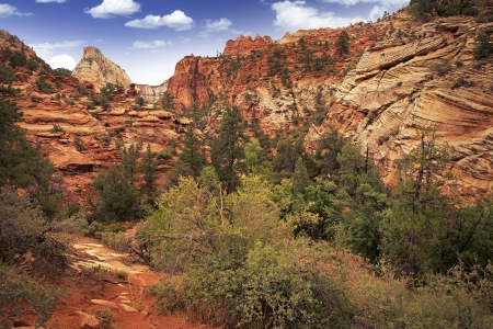 canyonland: Utah Zion Landscape. Zion National Park in Southern Utah State, USA.