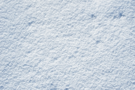 Snowy Background - Snow Backdrop  Winter Background Collection