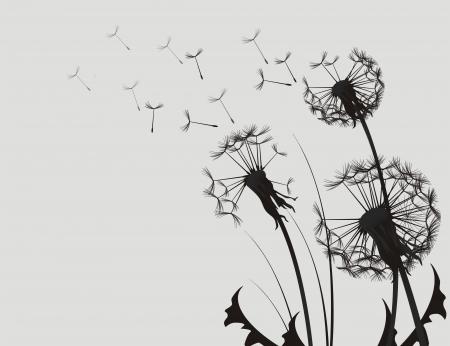 Paardebloem Silhouette zwart-witte illustratie.