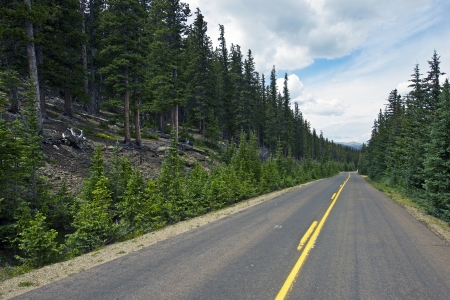 mount evans: Colorado Forest Road. Rocky Mountains Paved Road Near Mount Evens. Colorado Trip. Stock Photo