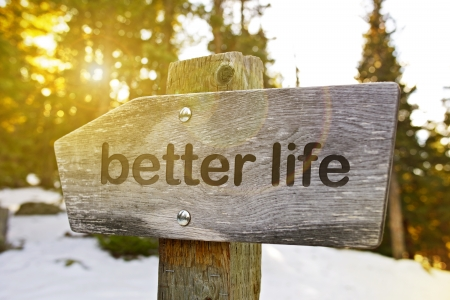 life success: Better Life Trail. Best Way to Better Life. Wood Mountain Sign.  Stock Photo