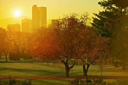 denver: Sunset Light. Girl on a Park Tree, Denver, Colorado Skyline and Beautiful Sunset Light. Autumn Theme. Cities Collection.