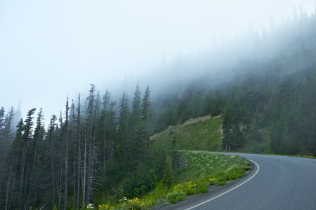 Foggy Mountain Road in Washington State Peninsula.  photo