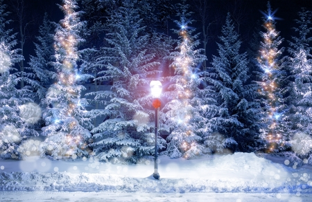 Mysterious Christmas Alley with Bright Vintage Style Lamp Post and Fir Trees Under Snow. Snowy Christmas Scenery with Holiday Decoration.
