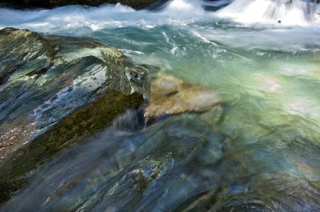 rushing water: Rushing Waters of Mountain Stream. Water and Rocks Nature Details.