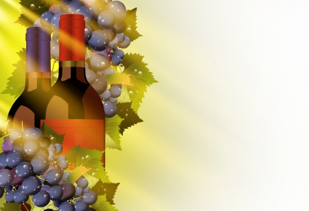 Vine and Grapes Illustration with Solid White Copy Space. Autumn Sun Rays Coming Through. illustration