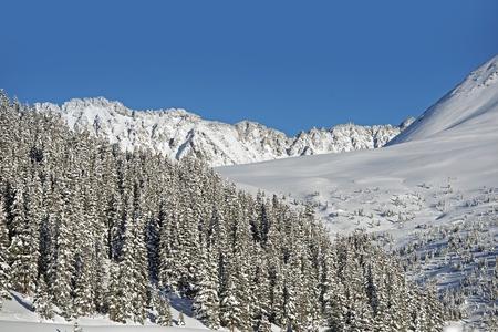 colorado rocky mountains: Winter Land. Sunny Winter Day in Colorado Rocky Mountains. Colorado Countryside.