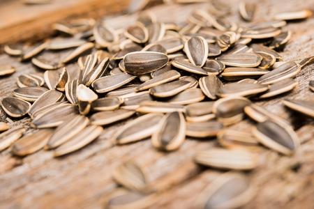 semillas de girasol: Girasol Semillas orgánicas sobre el Wood Boards Primer. Foto de archivo