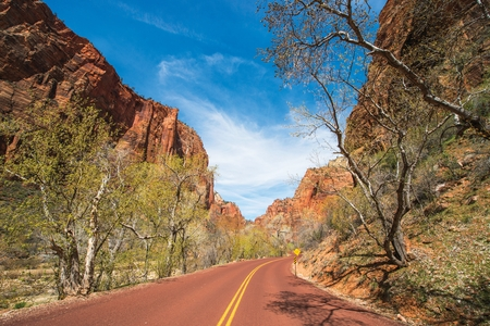 pine creek: Scenic by Way in the Zion National Park. Park Road in Spring.