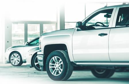 ディーラー車は売り物です。ツリーの銀色の車の行。車のビジネス。
