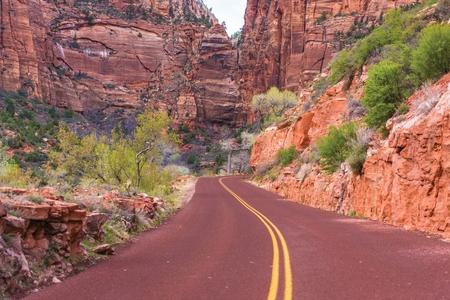 pine creek: Scenic Zion Road. Zion National Park Interior Road. Utah, USA.