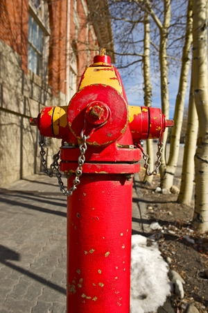 Red City Fire Hydrant Closeup Vertical Photo. photo