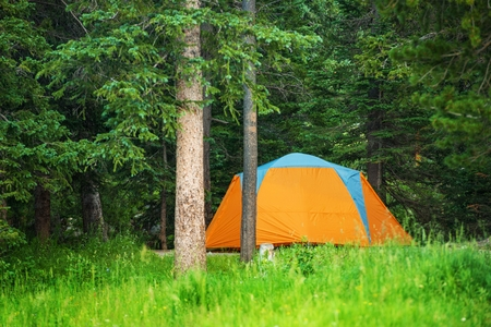 campground: Forest Campground Tent. Orange Tent Between Trees.
