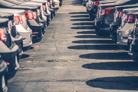 fila: Brand New Coches Para La Venta. Dos filas de coches. Dealer Stock.