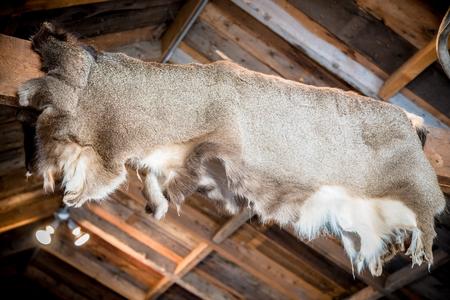 hunter's cabin: Deer Skin - Coat in the Hunters Cabin. Animal Coat Leather. Hunters Cabin Interior.