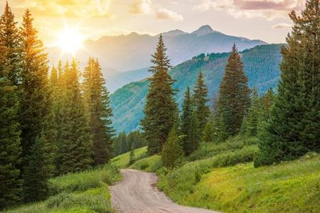 colorado landscape: Mountain Landscape. Colorado Wilderness Backcountry Road.