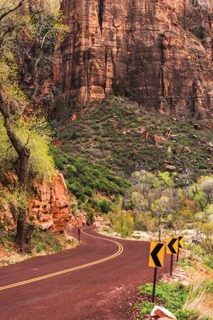 pine creek: Utah Zion Scenic Road. Zion National Park, Utah, United States. Scenic Drive.