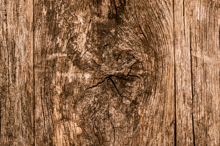 knotting: Aged Knotted Wood Photo Background.