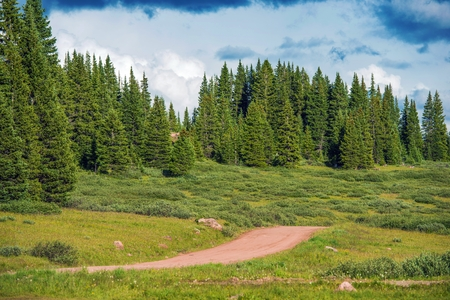 arri�re-pays: Forest Road Backcountry �t� dans le Colorado Summit County.