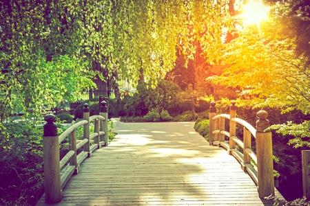 Scenic Garden Bridge at Sunset. Summer in the Garden. Stock Photo