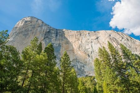 el capitan: Summer Yosemite Scenery. El Capitan Vertical Rock Formation. Yosemite National Park, California, United States.