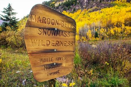national forest: Maroon Bells Snowmass desierto - R�o Blanco en el Bosque Nacional Muestra de madera cerca de Maroon Bells, Aspen, Colorado, Estados Unidos.