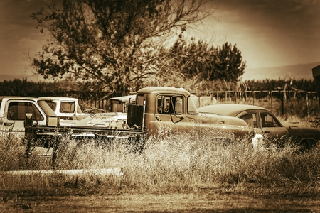 jalopy: Aged American Cars Graveyard Somewhere in California. Rusty Abandoned Cars. Sepia Color Grading.